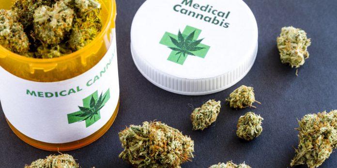 Medical- Marijuana-Program-in-FL-www.leafedout.com